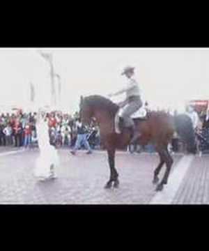 Feria  Abril Las Palmas de Gran Canaria Sevillanas Ecuestres Doma Vaquera Arucas