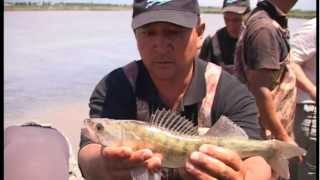 Рыбалка на иссык кули