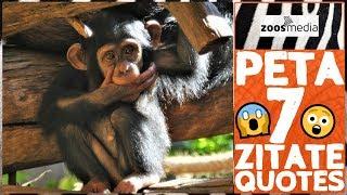 7 Zitate Von PETA, Die Man Kennen Sollte 😱   Zoos.media