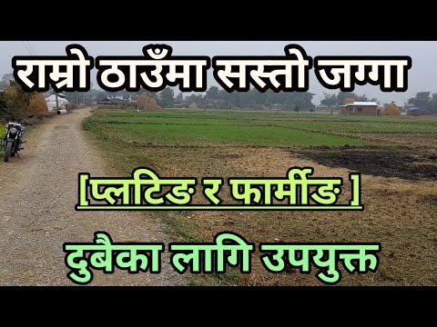निकै सस्तो मुल्यमा १ बिगाहा जग्गा बिक्रीमा || sasto jagga for plotting and farming by 3rdeye33