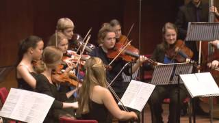 MAX Muziekwijzer Academie: Het brein en muziek door prof. Erik Scherder