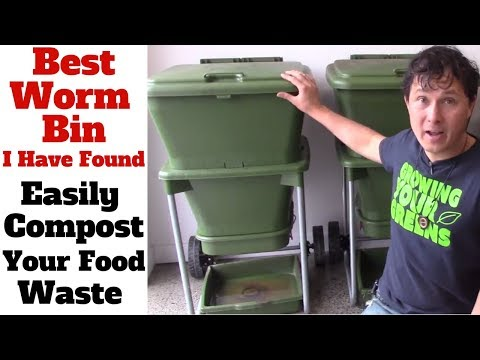 Giardia drug treatment Makmiror
