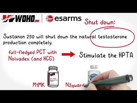 Milyen gyógyszerekkel lehet gyógyítani a prosztatagyulladást