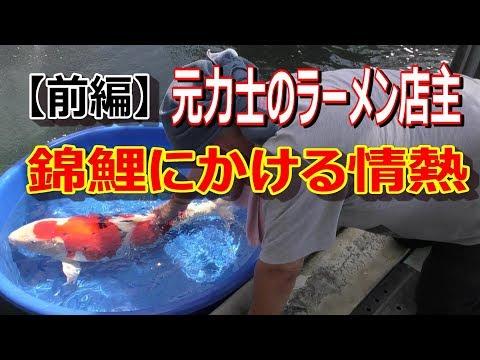 """元力士のラーメン店主 錦鯉にかける情熱(前編)""""Nishiki Koi ,Colored carp & Sumo & Ramen""""EP1"""