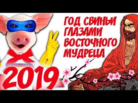 2019 год Свиньи с точки зрения восточного мудреца