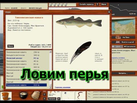 Русская Рыбалка 3.99 (Russian Fishing) Ловим перья на Заливе Александры