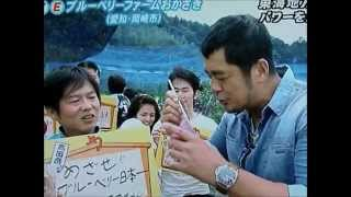 愛知県ブルーベリー狩り・夏の味覚狩り観光スポット紹介ビデオ2014年版
