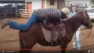 Caidas a Caballo || Videos de Risa  Mas Chistosos Para Whatsapp 73