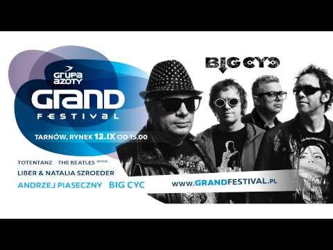 Grupa Azoty Grand Festival 2015 - zdjęcie