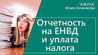 Отчетность на ЕНВД. Декларация по ЕНВД и уплата налога