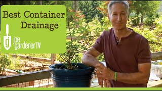 How to repot houseplants for beginners