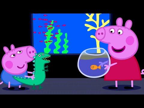 Peppa Pig English Episodes | Peppa Pig visits the Aquarium | Peppa Pig Official