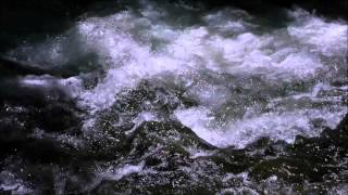 """Damien Rice """"Cold Water"""""""