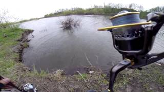 Zip baits Orbit 110 в Тамбовской области!