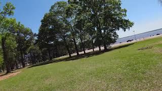 DJI FPV in Trees