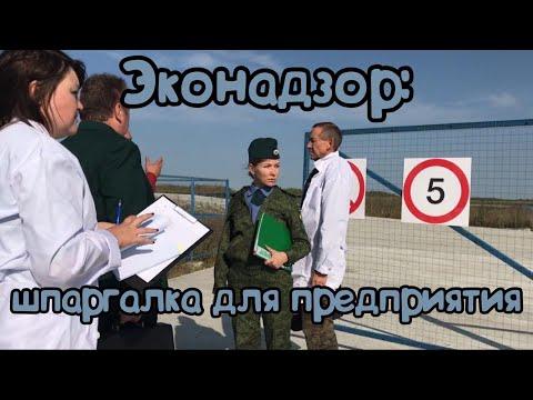 Доклад Н.Соколовой об особенностях проведения и обжалования экологических проверок