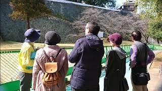 熊本城観光ぐるっと一周コース120分コース