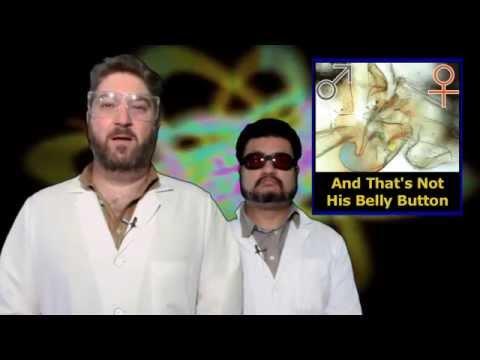 Tipuri și tipuri de penisuri