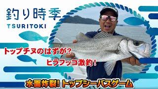 """【釣り時季】""""水面炸裂!トップシーバスゲーム"""""""