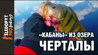 Рыбалка на озере черталы тюкалинского района