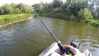 Рыбалка на КРАСИВОЙ Реке! СУДАК Лесной Реки!