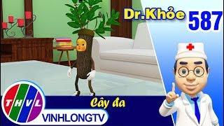 Dr. Khỏe - Tập 587: Cây đa – Phần 2