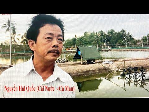 Kinh nghiệm nuôi tôm của của một Việt kiều