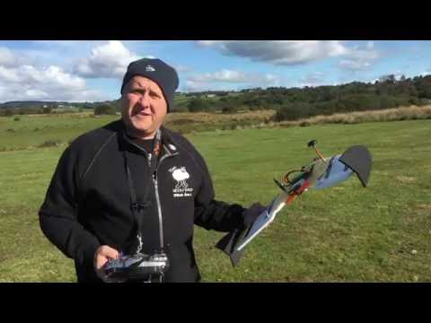 hornet-mini-fpv-wing-test-flight