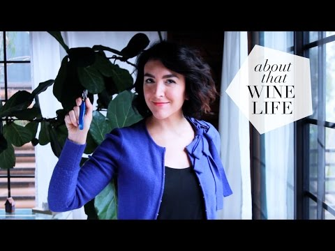 How to Become a Sommelier (Or How I Did) - YouTube