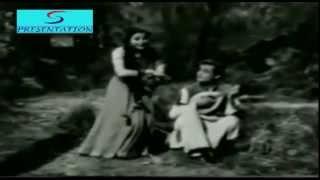 Raat Hai Taaron Bhari - Lata Mangeshkar - PARDES