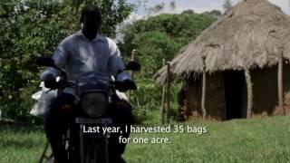 Agrics Kenya