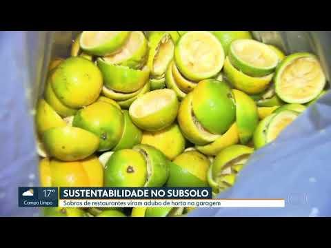 Pátio Malzoni – SPTV Globo 2018