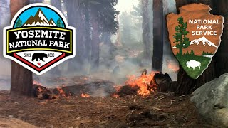 Visiting a smoked-out Yosemite National Park during crazy wildfires