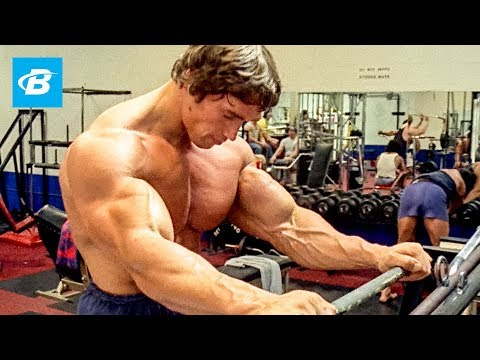 Download How To Train For Mass | Arnold Schwarzenegger's Blueprint Training Program HD Mp4 3GP Video and MP3
