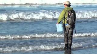 Surf Fly Fishing - San Diego - So Cal Fly Fishing