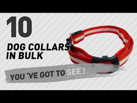 Dog Collars In Bulk // Top 10 Most Popular