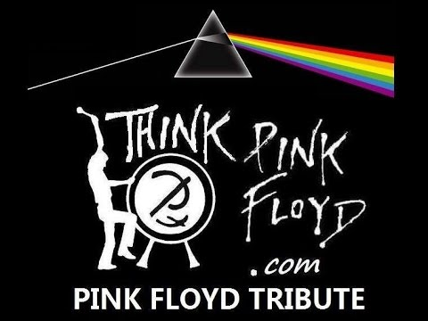 THINK PINK FLOYD comfortably numb syracuse ny show