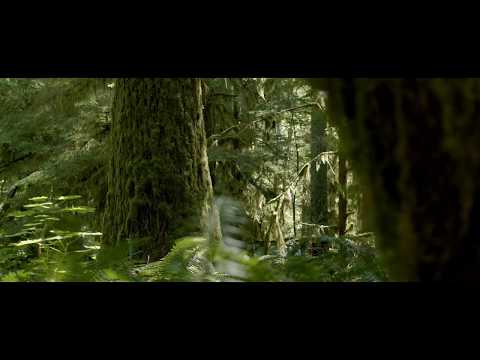 Blackmagic Pocket Cinema Camera 4K 'Nature'