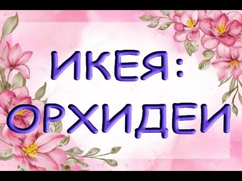 """ЗАВОЗ ОРХИДЕЙ в ИКЕЕ,ТЦ """"Мега"""",Самара,13.09.21."""