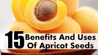 Apricot Kernel health benefits and antioxident that cures cancer with vitamin B17