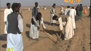 Eritrean News  Mensura - Haikota - Maetotawi Netfetat by Eritrea TV