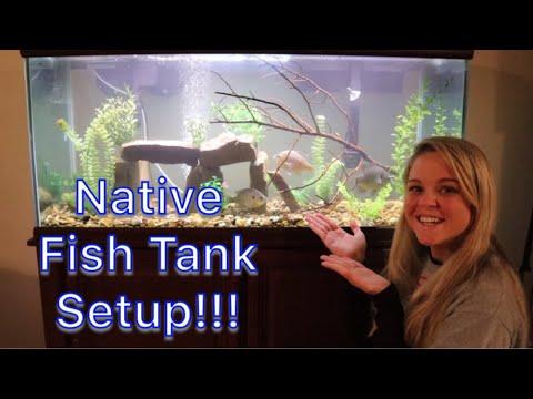 Setting Up a NATIVE FRESHWATER FISH Aquarium!!!!