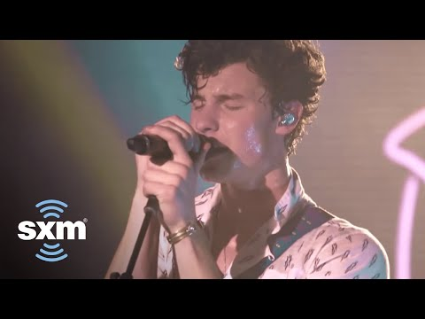 Shawn Mendes Performs 'In My Blood' for SiriusXM