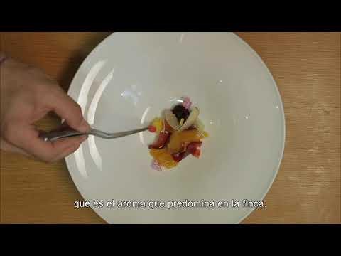 Cocinando en el fin del mundo (Subtitulada) - Tráiler