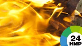 Виноваты люди: причиной пожара в Забайкалье стал горящий мусор - МИР 24