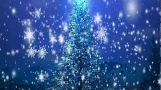 Merry Christmas!! Adobe After Effects Intro 3D Motion Graphic Free Video Loop Download