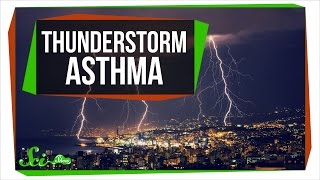 How a Storm Triggered a City-Wide Asthma Attack...