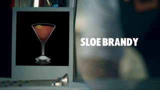 SLOE BRANDY DRINK RECIPE - HOW TO MIX