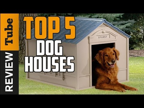 ✅Dog House: Best Dog House 2018 (Buying Guide)