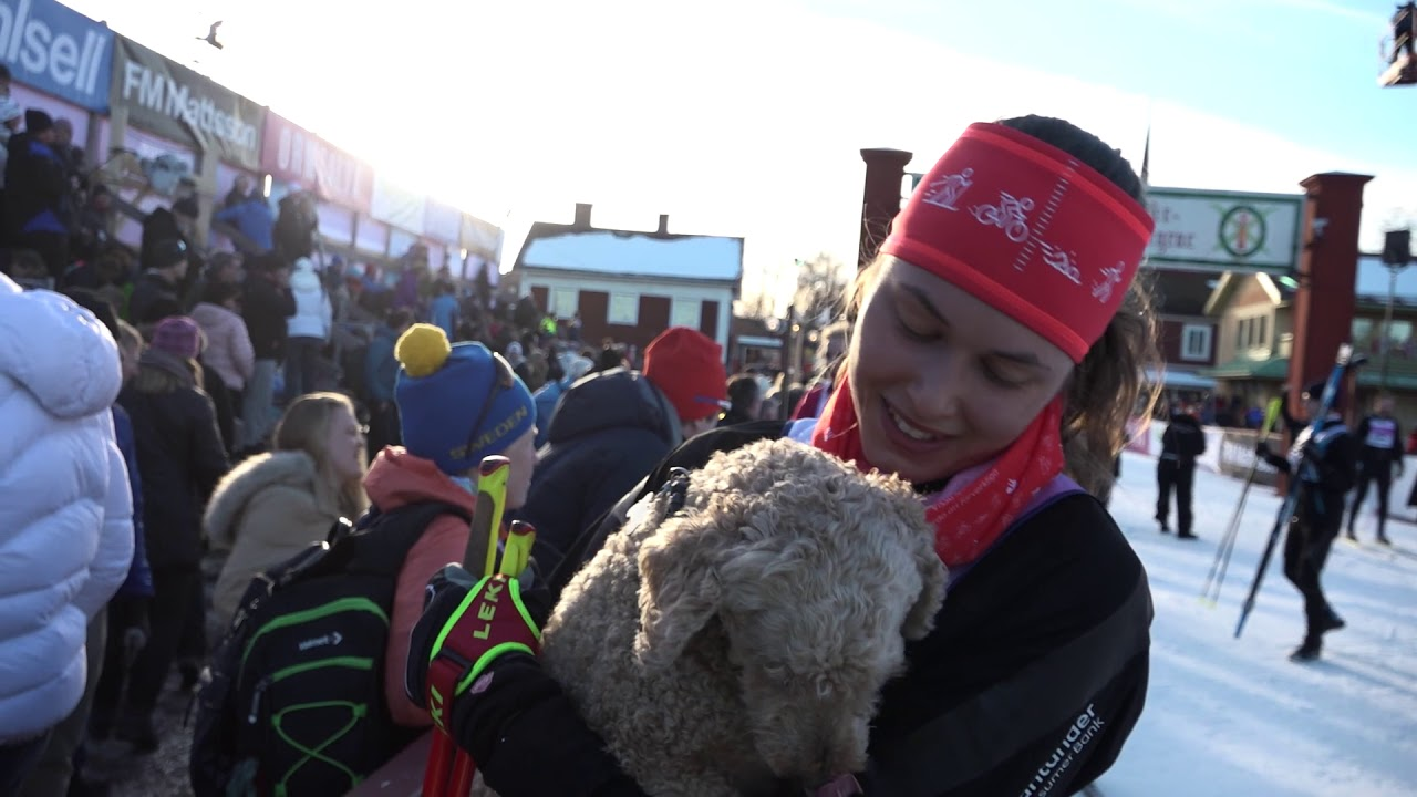 AVSNITT 4 – Vasaloppet Hur kommer det gå för Line, Michel, Susanne och Ulrica i Öppet Spår som är exakt lika långt som ett Vasalopp. Följ den 90 km långa spännande resan från Sälen till Mora.